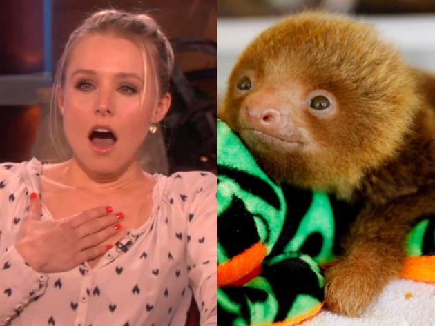 Kristen Bell sloth
