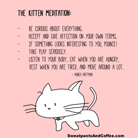 Kitten Meditation graphic