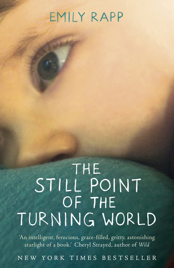 Still Point Of The Turning World Emily Rapp