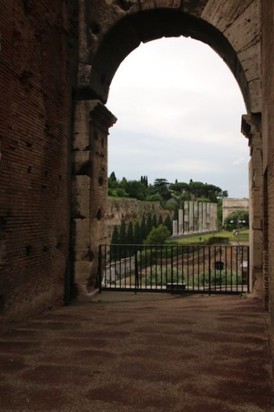 A glimpse of Tuscany taken by the author on his recent visit to Italy. Photo by Terry Price