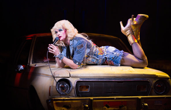 The Tonys Hedwig