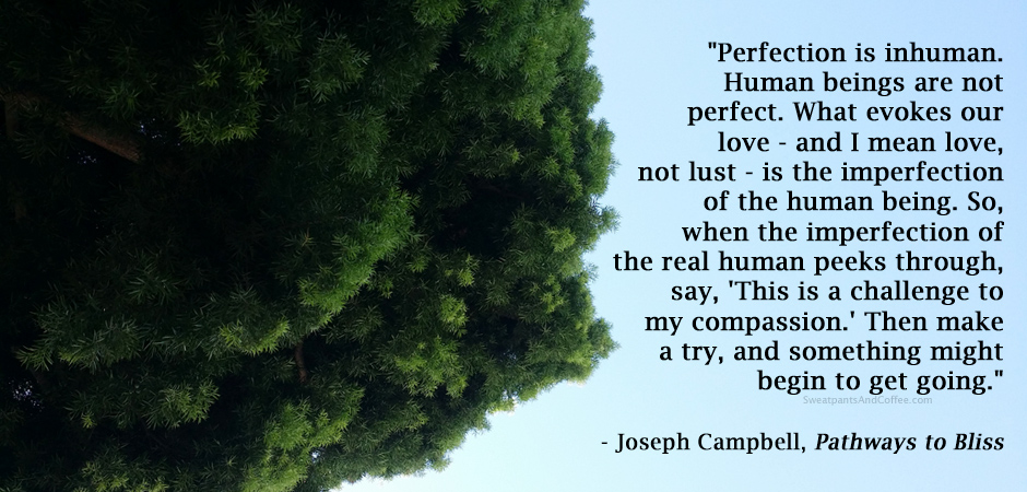 Joseph Campbell quote on perfectionism