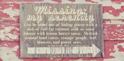 Missing My Serenity slide