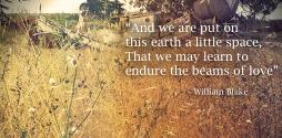 William Blake quote beams of love slide