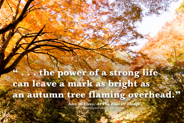 WP_Autumn Leaves by Yoshikazu Takada