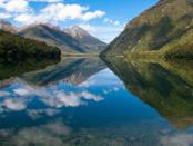 New Zealand wp