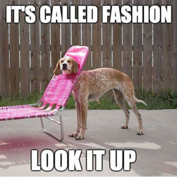 My fashion sense is best described as: