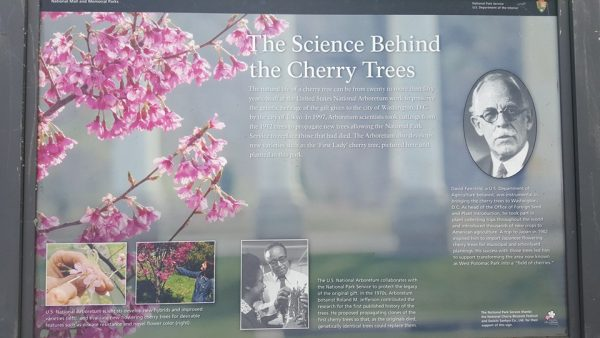 Blossom Science