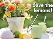 Lemons-WP