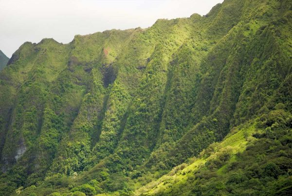 Koolau-mountains