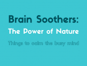 940x450-brain-soothers-the-power-of-nature