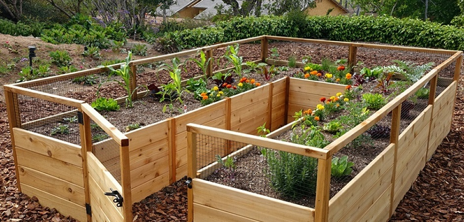 sweatpants sanity fantasy break raised garden bed kits