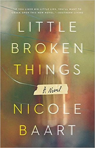 Little Broken Things A Novel by Nicole Baart