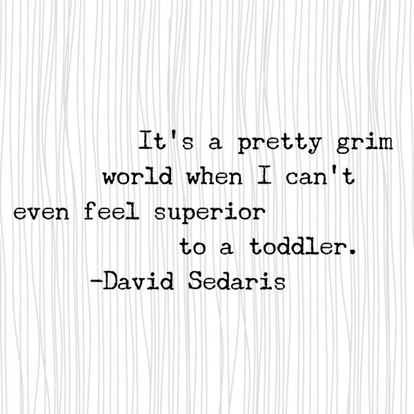 David Sedaris Quote