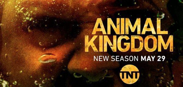 animal kingdom tv show season 3 episode 1
