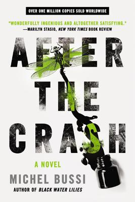After the Crash - Michael Bussi