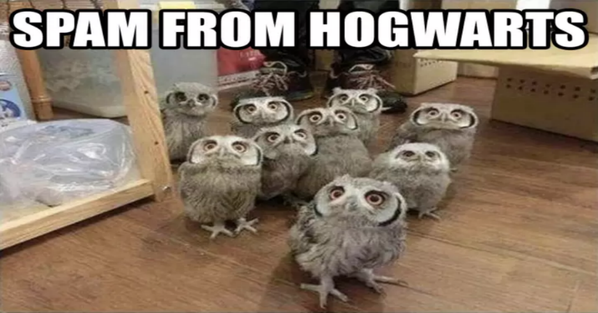 Making Us Laugh This Week 13 Magical Harry Potter Memes
