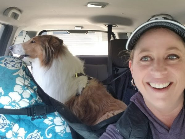 11 Tips for Traveling with Dogs