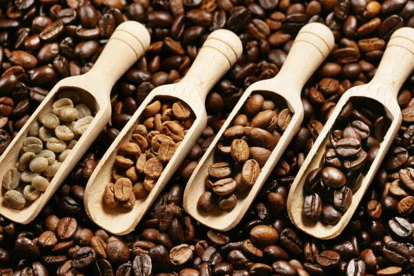 True or False: Dark roast coffees have less caffeine than lighter roasts.