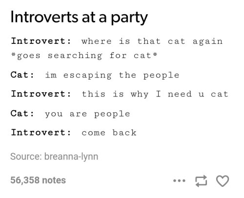 introvert-at-a-party