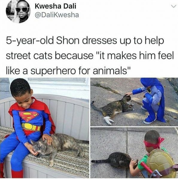 15-Shon-dresses-up-for-street-cats