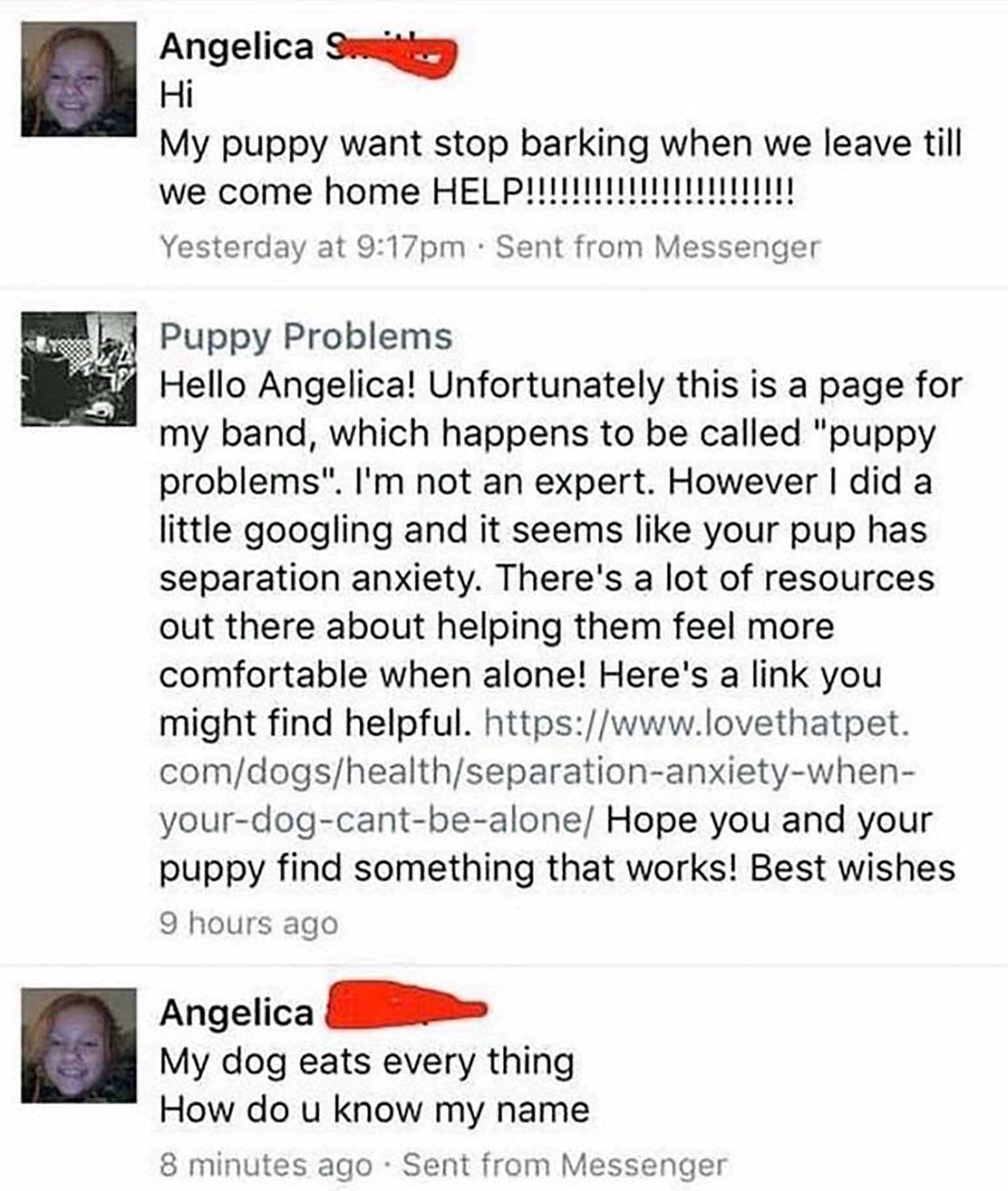 7-puppy-problems