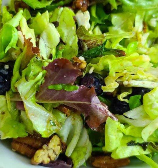 Catastrophe Kitchen | Blueberry Pecan Summer Salad with Sherry Vinaigrette