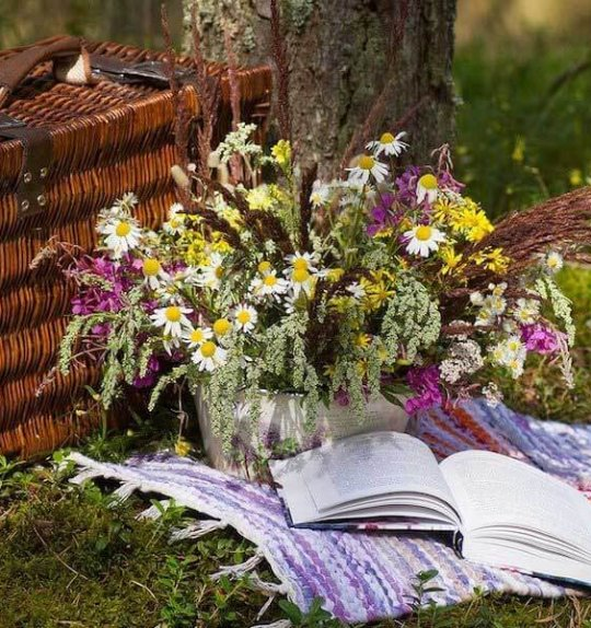 8 Picnic Recipes for a Pleasurable State of Mind